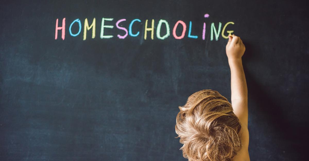 Homeschooling. El reto de educar en casa.