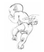 Reflejo Galant, Reflejos primitivos y su papel en el aprendizaje, kokoro kids