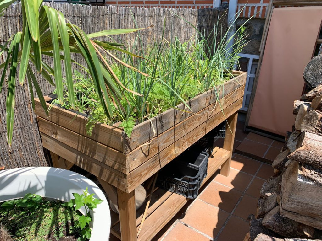 mesa de minicultivo, de cultivar un huerto fácil con niños, kokoro kids